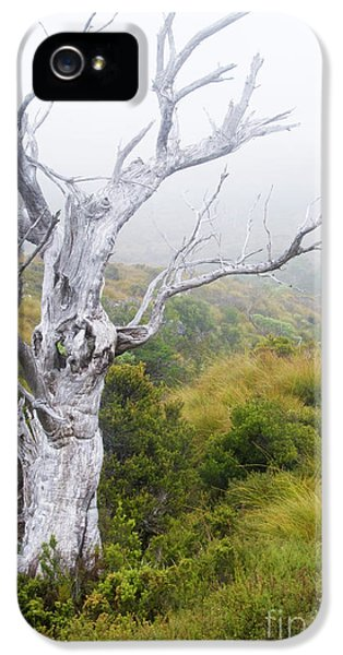 IPhone 5s Case featuring the photograph Ghost by Werner Padarin