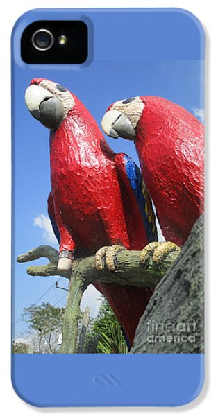 Giant Macaws IPhone 5s Case by Randall Weidner