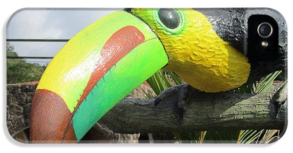 Giant Toucan IPhone 5s Case by Randall Weidner