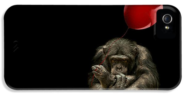 Girl With Red Balloon IPhone 5s Case by Paul Neville