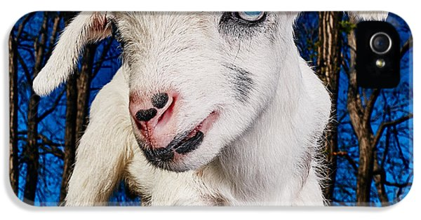 Goat High Fashion Runway IPhone 5s Case by TC Morgan