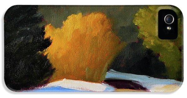 Golden Light Winter Road IPhone 5s Case by Nancy Merkle