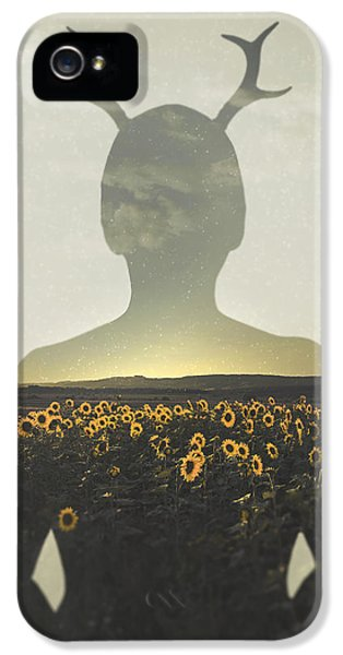 Sunflower iPhone 5s Case - Goodbye Summer by Art of Invi