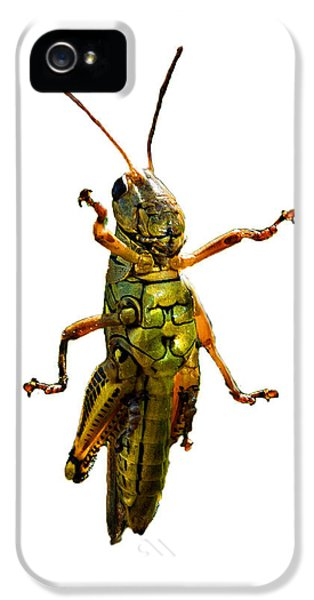 Grasshopper iPhone 5s Case - Grasshopper II by Gary Adkins