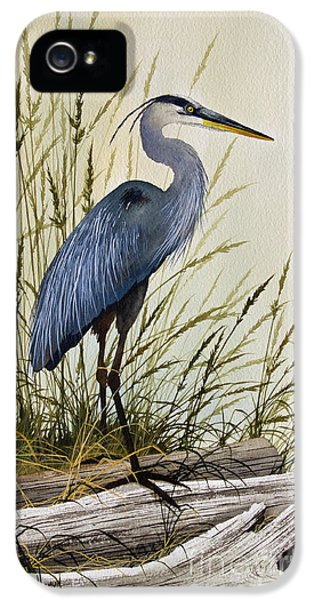 Heron iPhone 5s Case - Great Blue Heron Splendor by James Williamson