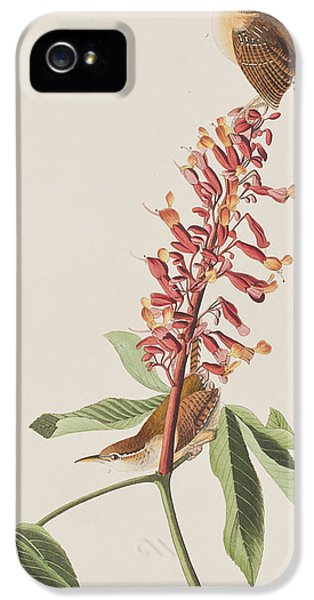 Great Carolina Wren IPhone 5s Case by John James Audubon