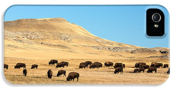 Great Plains Buffalo IPhone 5s Case