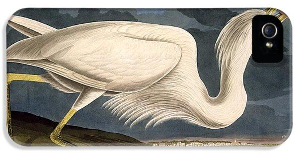 Heron iPhone 5s Case - Great White Heron by John James Audubon