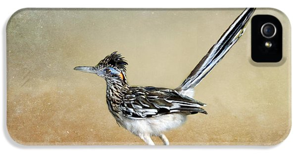 Greater Roadrunner 2 IPhone 5s Case by Betty LaRue