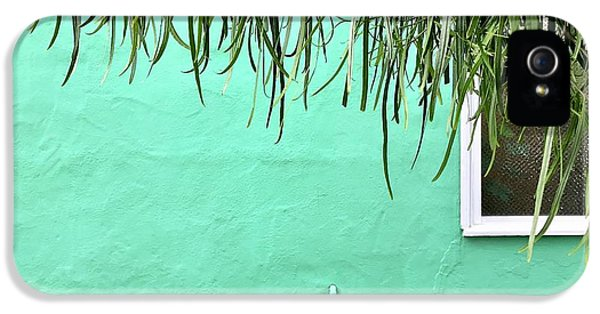 iPhone 5s Case - Green Wall With Leaves by Julie Gebhardt
