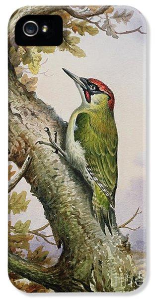 Green Woodpecker IPhone 5s Case