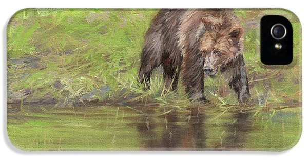 Grizzly Bear At Water's Edge IPhone 5s Case