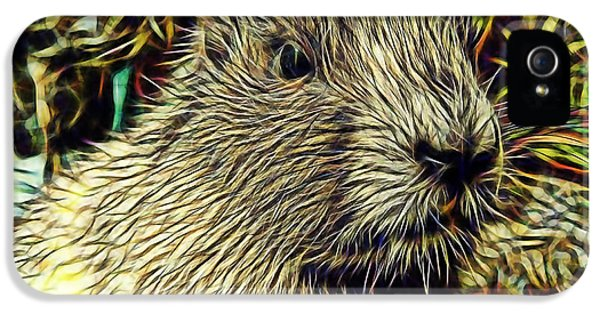 Groundhog IPhone 5s Case