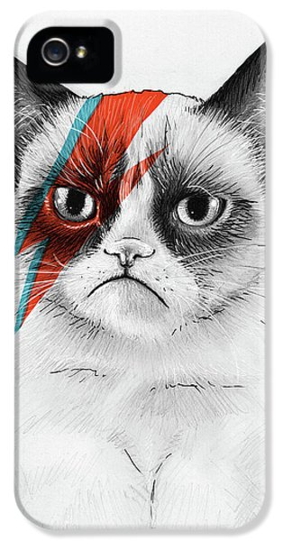 Portraits iPhone 5s Case - Grumpy Cat As David Bowie by Olga Shvartsur