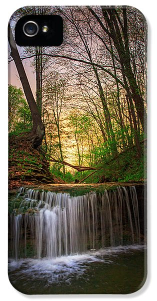 Beaver iPhone 5s Case - Gypsy Glen  Rd Waterfall  by Emmanuel Panagiotakis