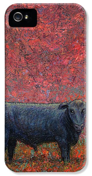Bull iPhone 5s Case - Hamburger Sky by James W Johnson