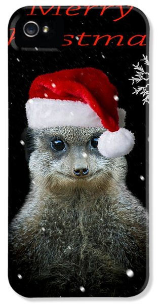 Happy Christmas IPhone 5s Case by Paul Neville