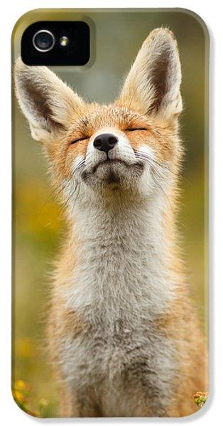 Fox iPhone 5s Case - Happy Fox by Roeselien Raimond