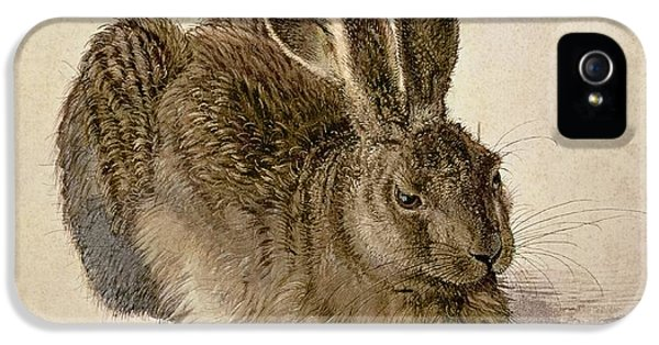 Hare IPhone 5s Case