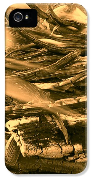 iPhone 5s Case - Harmony I I I by Orphelia Aristal
