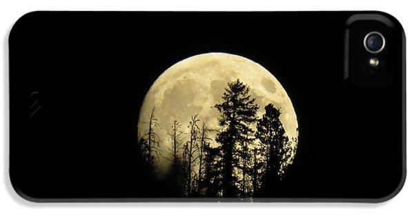 Harvest Moon IPhone 5s Case by Karen Shackles