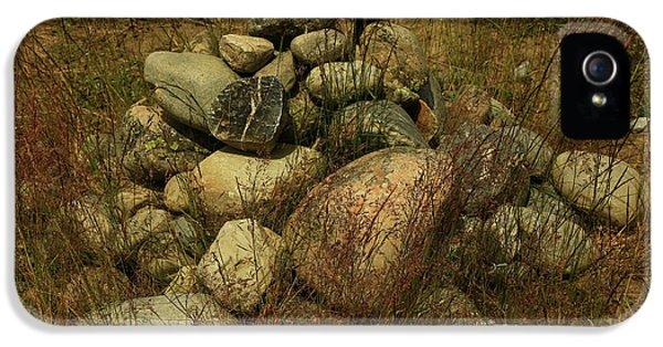 Heap Of Rocks IPhone 5s Case by Nareeta Martin