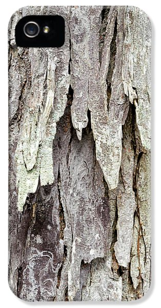 IPhone 5s Case featuring the photograph Hickory Tree Bark Abstract by Christina Rollo
