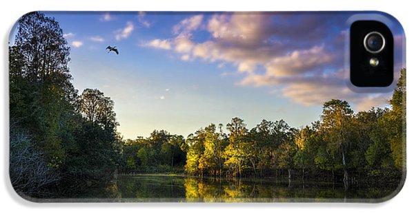 Alligator iPhone 5s Case - Hidden Light by Marvin Spates