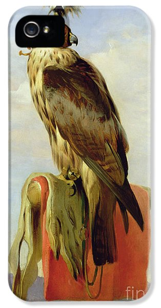 Hooded Falcon IPhone 5s Case by Sir Edwin Landseer