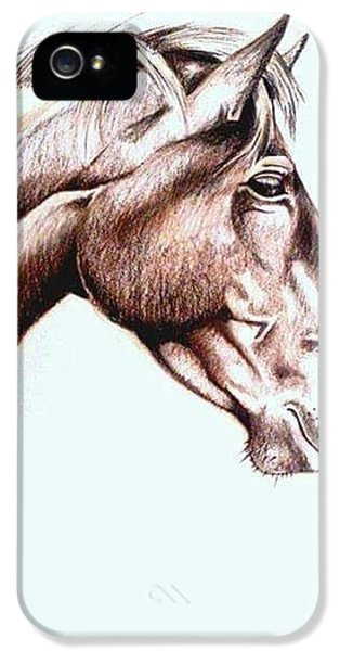 iPhone 5s Case - Horsing Around  by Janine Bouwer