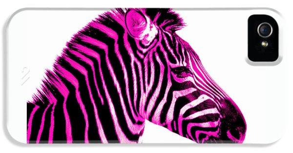 Hot Pink Zebra IPhone 5s Case by Rebecca Margraf