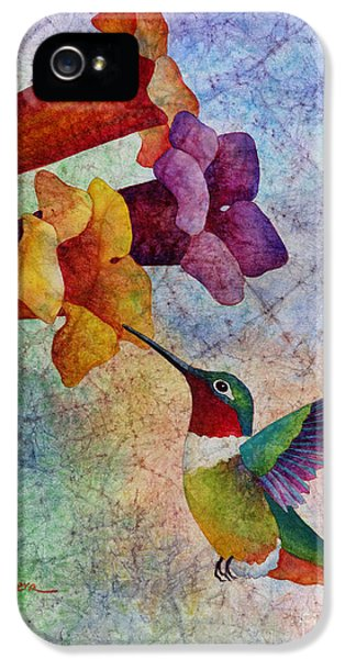 Humming Bird iPhone 5s Case - Hummer Time by Hailey E Herrera