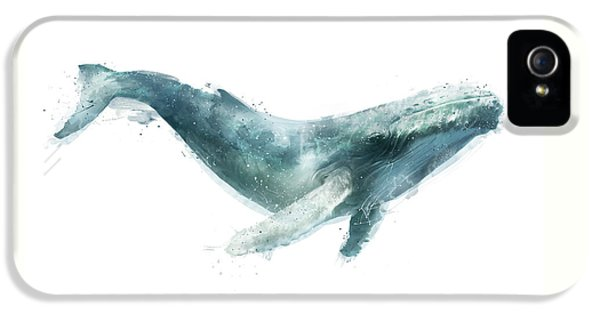 Humpback Whale From Whales Chart IPhone 5s Case by Amy Hamilton