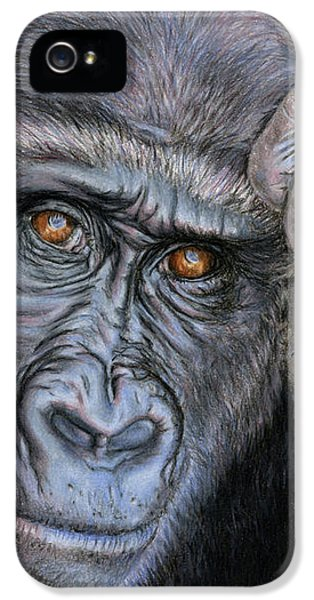 Gorilla iPhone 5s Case - I Think Therefore I Am by Sarah Batalka