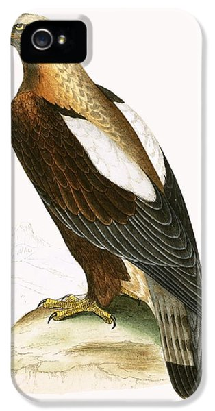 Imperial Eagle IPhone 5s Case by English School