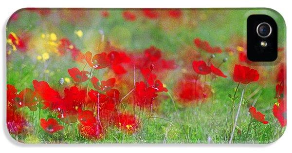 Impressionistic Blossom Near Shderot IPhone 5s Case