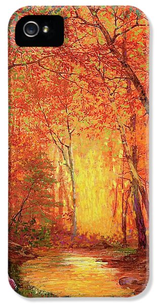 Figurative iPhone 5s Case - In The Presence Of Light Meditation by Jane Small