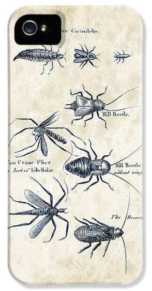 Insects - 1792 - 10 IPhone 5s Case by Aged Pixel