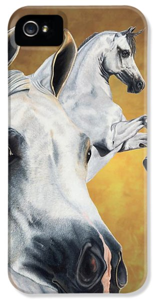 Horse iPhone 5s Case - Inspiration by Kristen Wesch