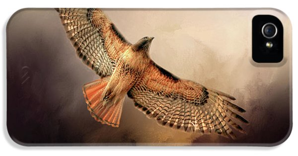 Buzzard iPhone 5s Case - Into The Light by Donna Kennedy