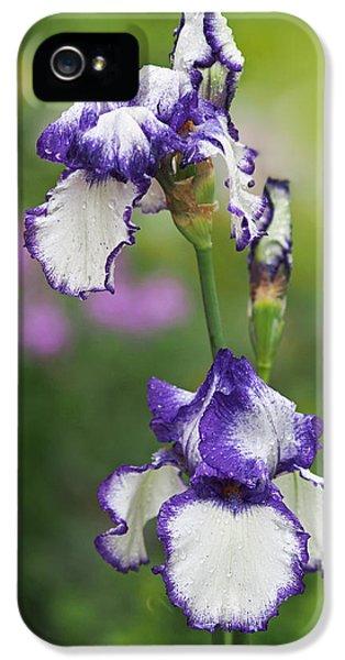 Iris Loop The Loop  IPhone 5s Case by Rona Black