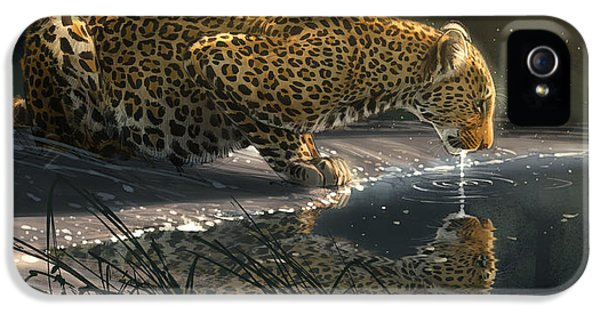 Leopard iPhone 5s Case - Just A Sip by Aaron Blaise