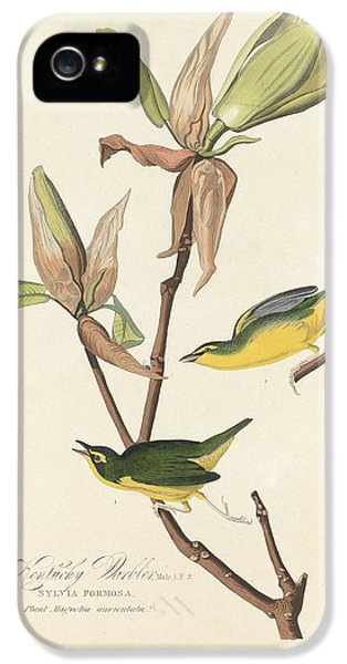 Kentucky Warbler IPhone 5s Case by Rob Dreyer