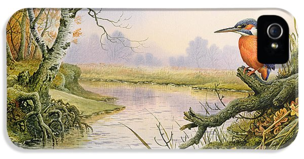 Kingfisher iPhone 5s Case - Kingfisher  Autumn River Scene by Carl Donner
