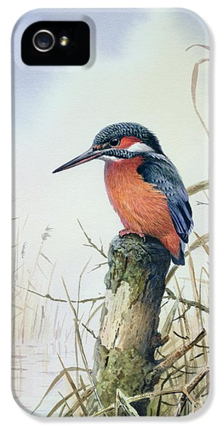 Kingfisher iPhone 5s Case - Kingfisher by Carl Donner