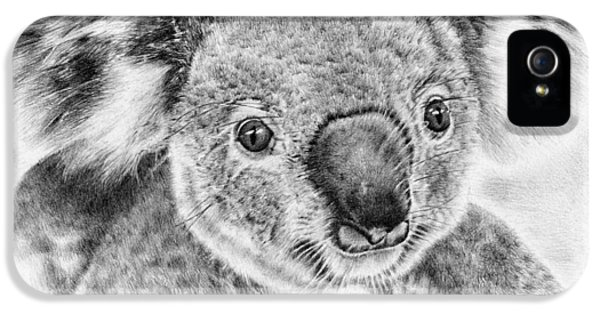Koala Newport Bridge Gloria IPhone 5s Case by Remrov