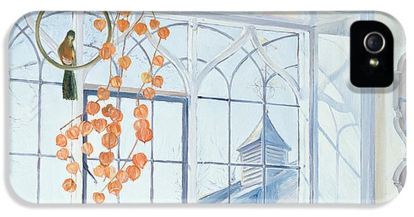 Lanterns IPhone 5s Case by Timothy Easton