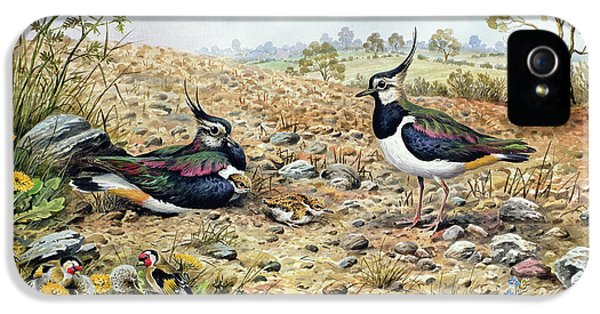 Lapwing Family With Goldfinches IPhone 5s Case by Carl Donner