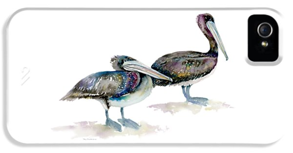 Laurel And Hardy, Brown Pelicans IPhone 5s Case by Amy Kirkpatrick