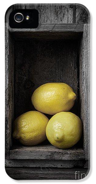 Lemons Still Life IPhone 5s Case by Edward Fielding